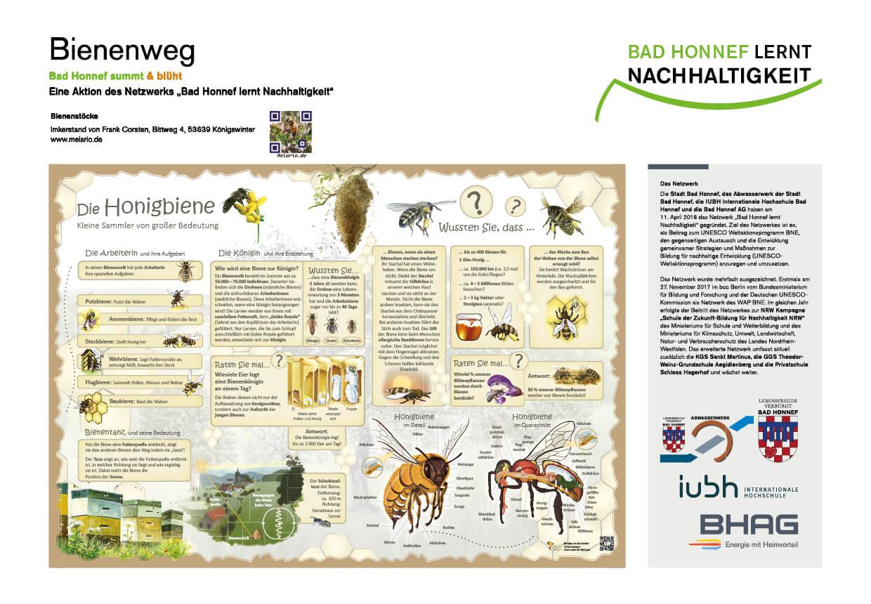 Tafel Honigbiene