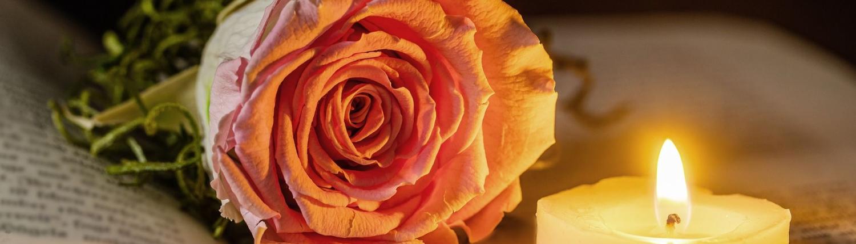Eine rosafarbene Rose liegt auf einem aufgeschlagenen Buch. Ein Teelicht steht auf dem Buch und wirft Kerzenlicht in das Bild