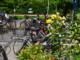 Abgestellte Fahrräder an der Endhaltestelle der Liinie 66 in Bad Honnef.