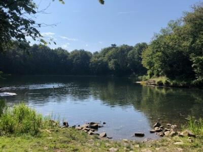 Homberger See - vom Ufer Ausblick