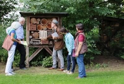 Foto zeigt die Ateurinnen und Akteure, wie sie das Bienenhotel betrachten.